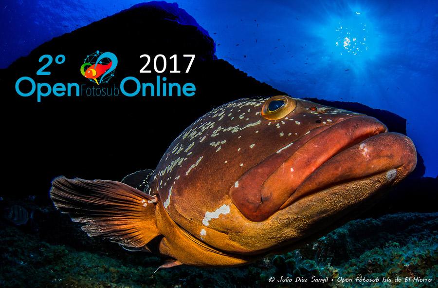 ¡Comienza la 2ª Edición del Open Fotosub Online Isla de El Hierro!
