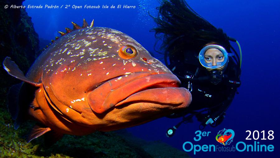 Se abre el plazo de las votaciones populares del 3er Open Fotosub Online